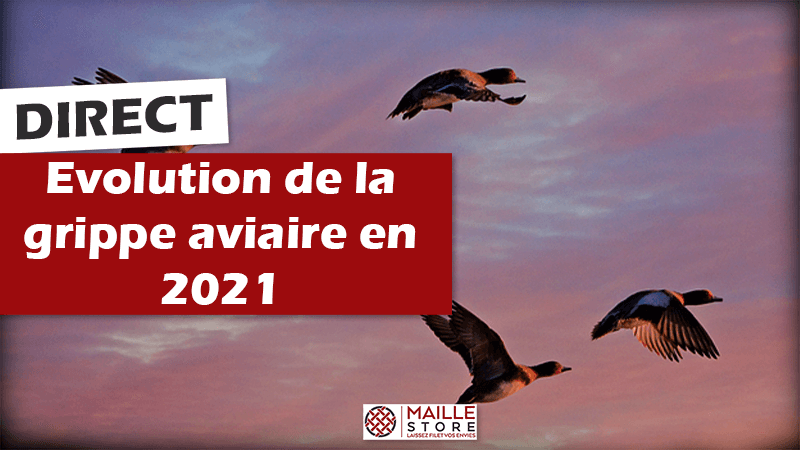 suivi-evolution-grippe-influenza-aviaire-ete-automne-hiver-2021.png