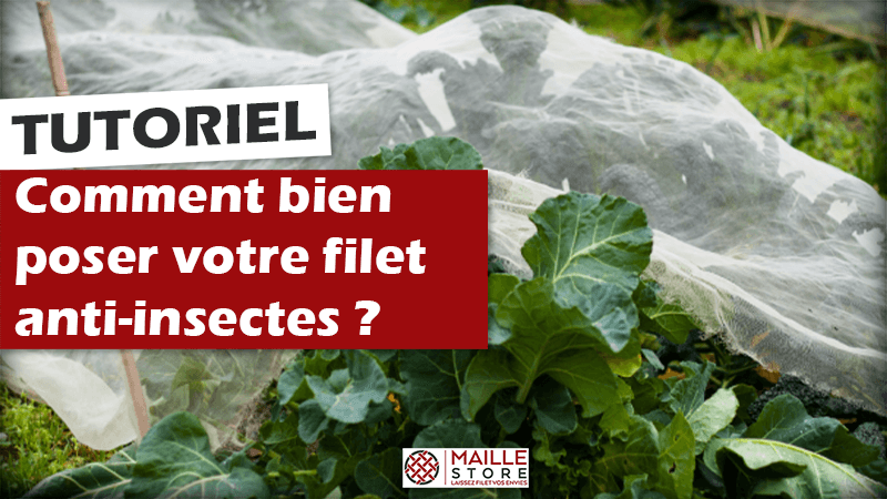 comment-poser-filet-anti-insectes-potager-maillestore.png